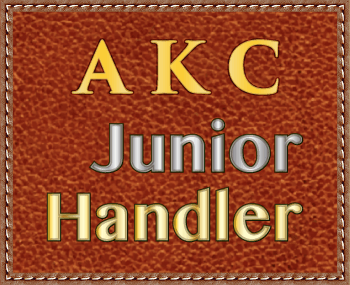 We welcome Junior Handlers